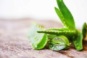 Succo e gel di aloe vera